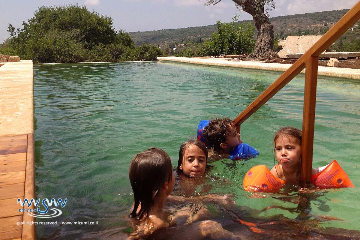 בריכת שחייה אקולוגית